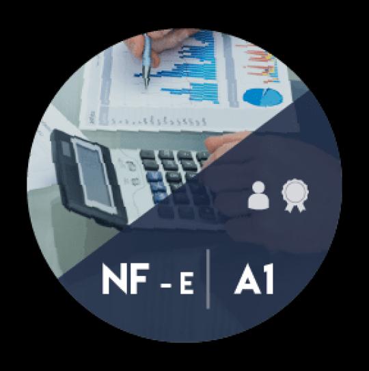 Certificado Digital para Nota Fiscal Eletrônica A1 (NF-e A1)